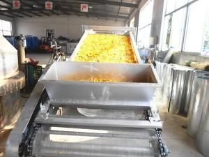 贵州蔬菜网带烘干机设备