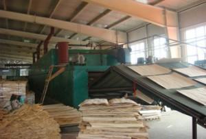 贵州木材专用蒸汽热风炉